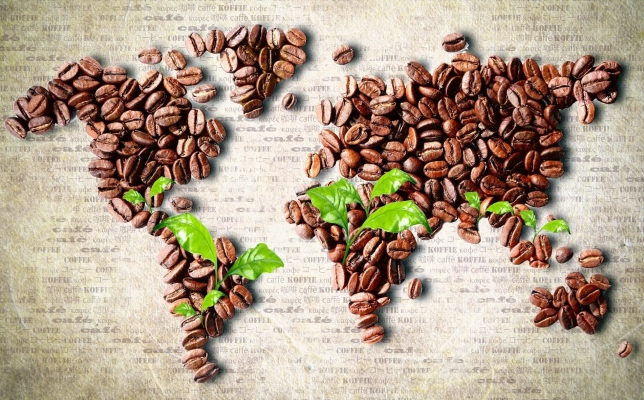 诸如原始的波旁种,摩卡种,蒂皮卡种,这些树种所生产出的咖啡豆具有